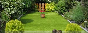 Image of a garden with artificial grass